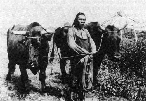 Aboriginal Injustice