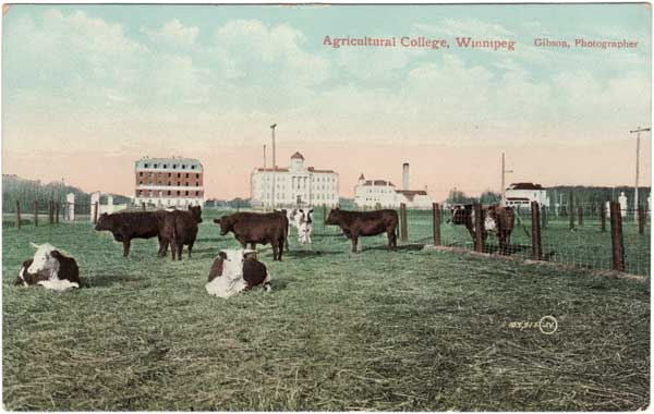 Manitoba Agricultural College